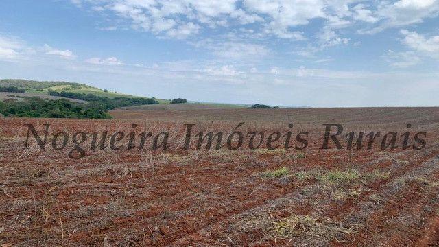 Fazenda com 72 alqueires na região de Itapetininga (Nogueira Imóveis Rurais) - Foto 13