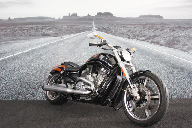 Harley davidson v-rod 1250 muscle vrscf 2013/2014 - Foto 18