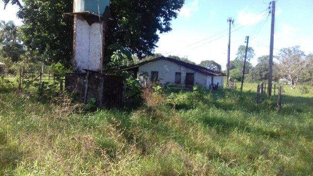 Sítio no Pará,20 hectares com pasto, curral, casa ,igarape por 250 mil reais - Foto 3