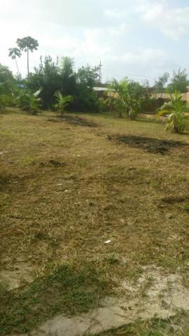 Vende-se um terreno * - Foto 3