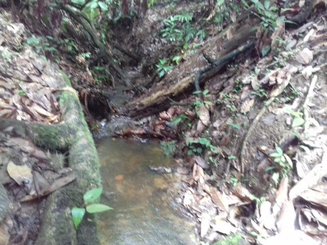 Fazenda Marau/Ubaitaba - Foto 15