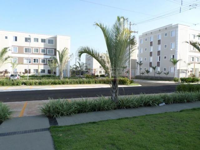 Apartamento para alugar com 2 dormitórios cod:L4772 - Foto 13