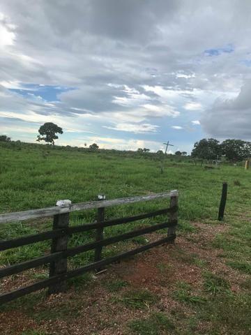 Fazenda 354 hectares, Município de Livramento/MT - Foto 10