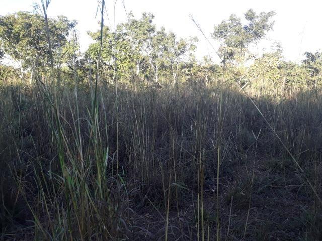 Chácara a 9 km de Acorizal com 38.2 hectares - Foto 14