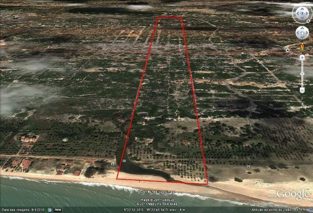Vendo Área na beira mar da Praia de Pititinga - Foto 3
