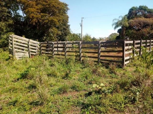 Chácara a 9 km de Acorizal com 38.2 hectares - Foto 5