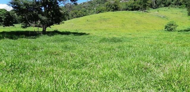 1010/Extraordinária fazenda de 5.199 ha para pecuária - Foto 17