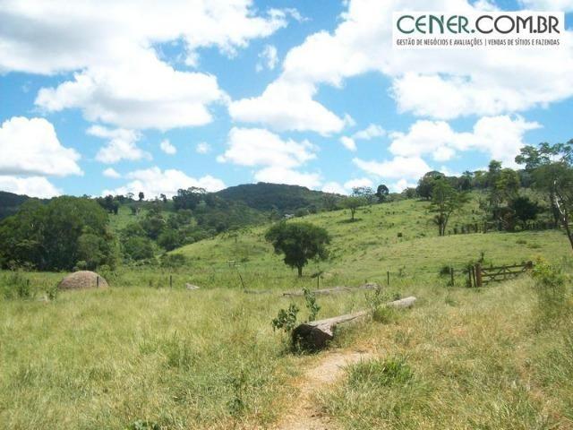 1010/Extraordinária fazenda de 5.199 ha para pecuária - Foto 16