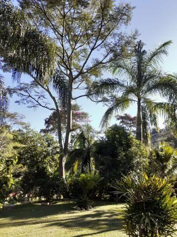 Vendo sítio- São Lourenço- São José do Vale do Rio Preto - Foto 2