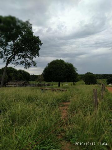 Chácara no município de Cariri do Tocantins - Foto 4
