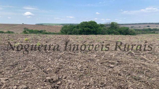 Fazenda com 72 alqueires na região de Itapetininga (Nogueira Imóveis Rurais) - Foto 11