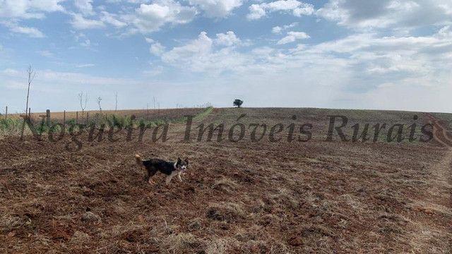 Fazenda com 72 alqueires na região de Itapetininga (Nogueira Imóveis Rurais) - Foto 5