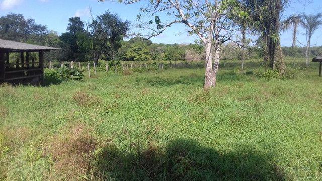 Sítio no Pará,20 hectares com pasto, curral, casa ,igarape por 250 mil reais - Foto 9