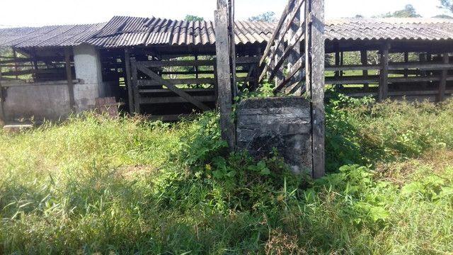Sítio no Pará,20 hectares com pasto, curral, casa ,igarape por 250 mil reais - Foto 16