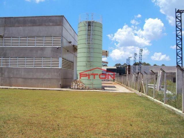 Galpão à venda, 2 m² por r$ 7.500.000 - núcleo industrial vereador alcides celestino filho - Foto 4
