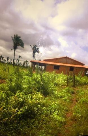 Vende-se Fazenda (abaixo o preço p vender logo) - Foto 5