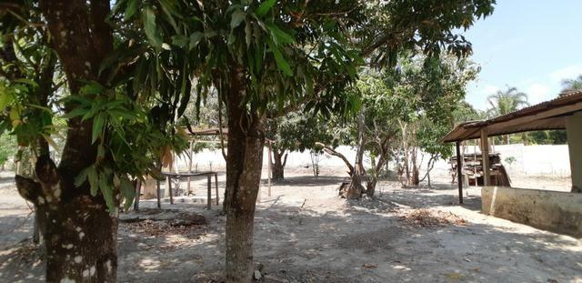 Chácara Quintas Bocaina Águas Lindas de Goias - Foto 12