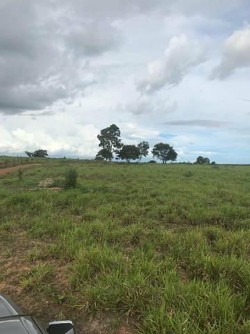 Fazenda 354 hectares, Município de Livramento/MT - Foto 5