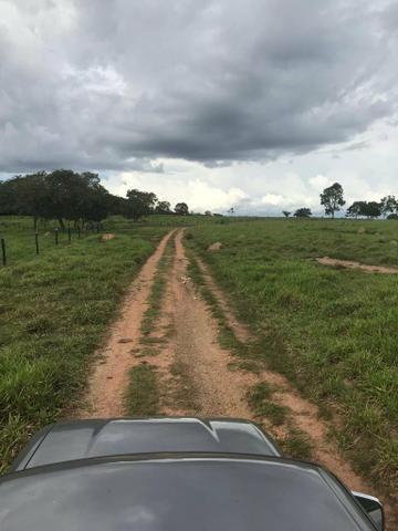 Fazenda 354 hectares, Município de Livramento/MT - Foto 7