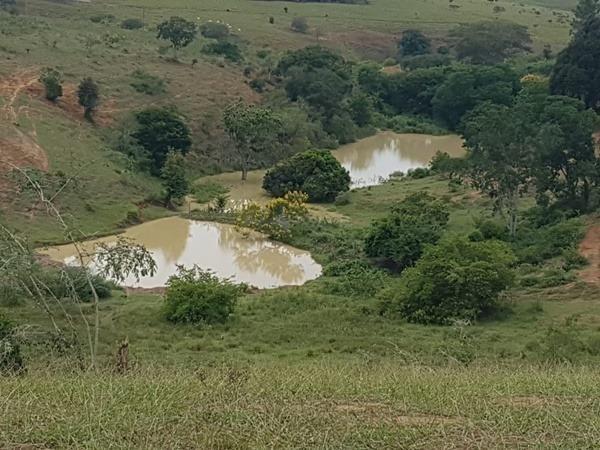 Vendo fazenda de Pecuária com 1.720 hectáres - Foto 12