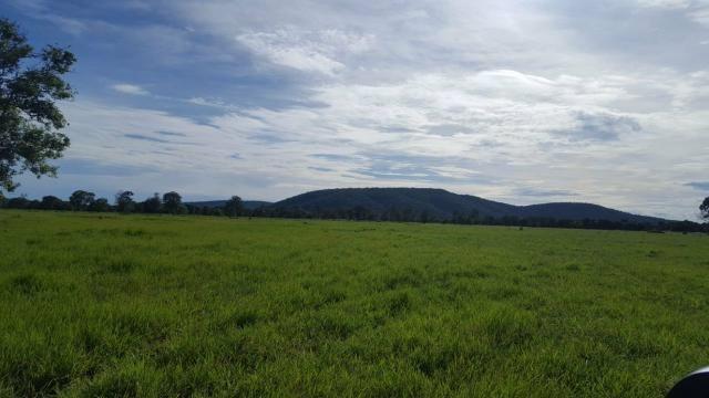 Fazenda Santo Antonio Leverger 870 Hectares - Foto 14