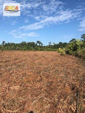 Fazenda à venda, com 310 hectares no município de Porto Velho/RO - Foto 4