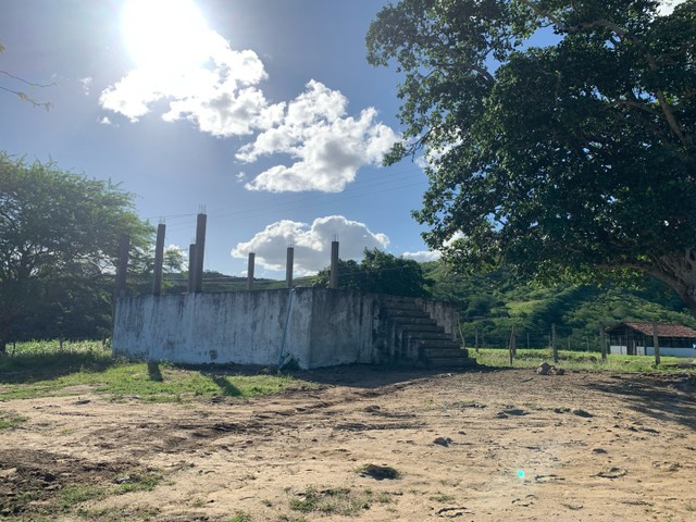 Sitio/Fazenda em Passira, Pernambuco. 12,7 hectares. - Foto 3