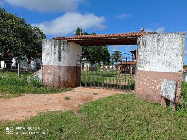 chacará - Foto 6