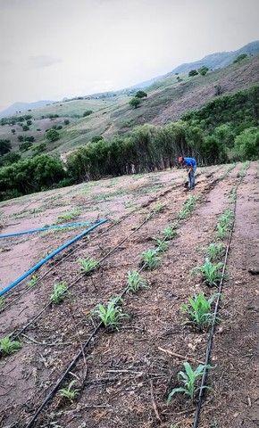 Sitio/Fazenda em Passira, Pernambuco. 12,7 hectares. - Foto 4