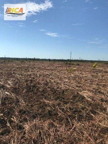 Fazenda à venda, com 310 hectares no município de Porto Velho/RO - Foto 8