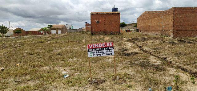 VENDO 03 LOTES MEDINDO 6x21 - Foto 3