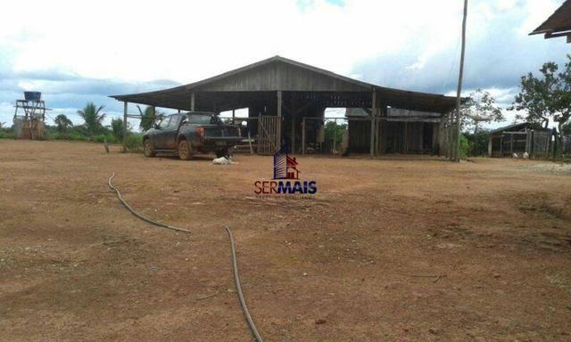 Excelente fazenda à venda na cidade de Alta Floresta do Oeste/RO - Foto 8