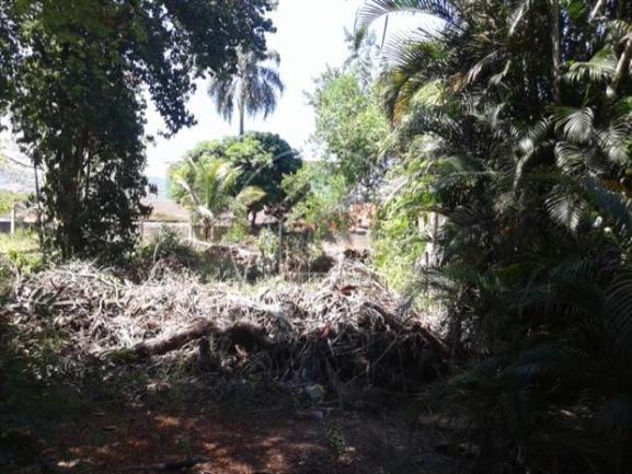 Sítio à venda com 5 dormitórios em Guaratiba, Rio de janeiro cod:262066 - Foto 8