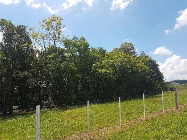 Terreno à venda, 396 m² por r$ 195.000,00 - união - estância velha/rs - Foto 5