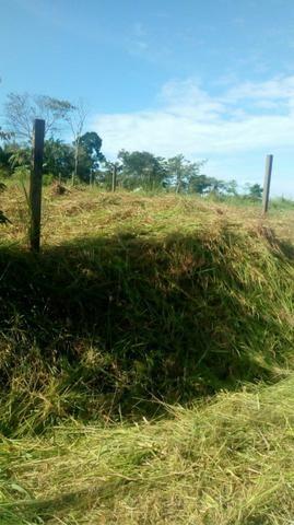 Vendo terreno urgente - Foto 5