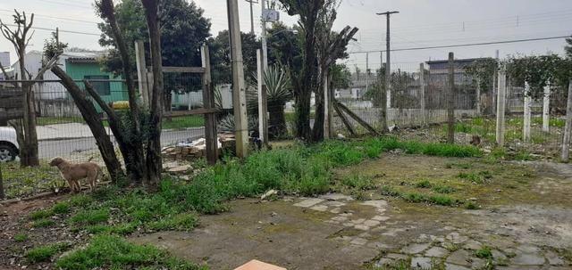 Vende-se terreno em Gravataí p72 bairro são Geraldo - Foto 2