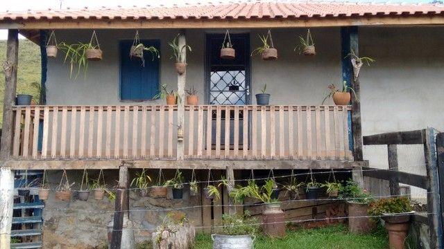 Vendo sítio com 12 hectares (120000m²) localizado em Carvalhos-MG - Foto 5