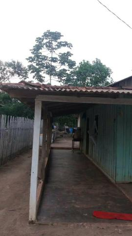 Vendo casa em Belterra