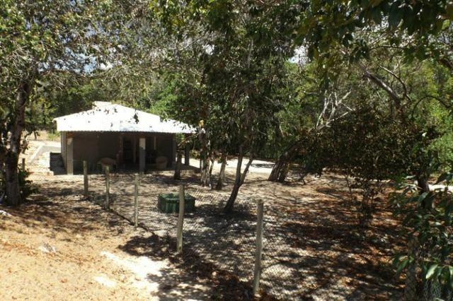 Terreno a venda no Cond. Quintas das Lagoas em Itacimirim - Foto 16