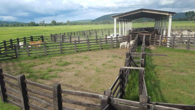 Fazenda Santo Antonio Leverger 870 Hectares - Foto 12