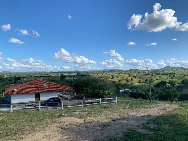 Sitio/Fazenda em Passira, Pernambuco. 12,7 hectares. - Foto 15