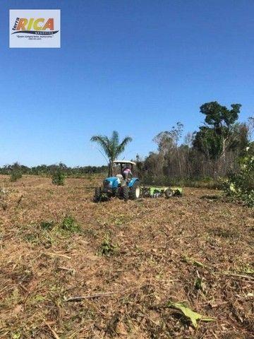 Fazenda à venda, com 310 hectares no município de Porto Velho/RO - Foto 6
