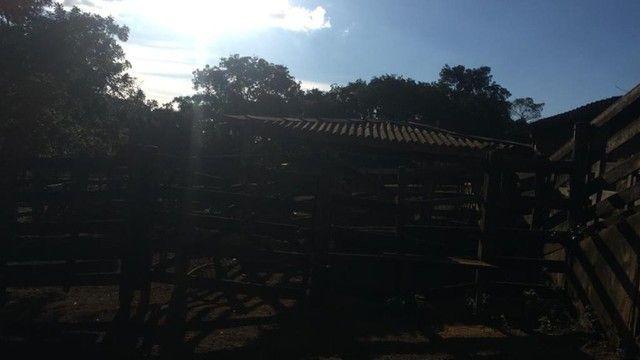 Fazenda 23 Alqueires, Anápolis-GO - Foto 6