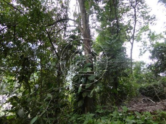 Terreno à venda em Barra da tijuca, Rio de janeiro cod:771399 - Foto 5