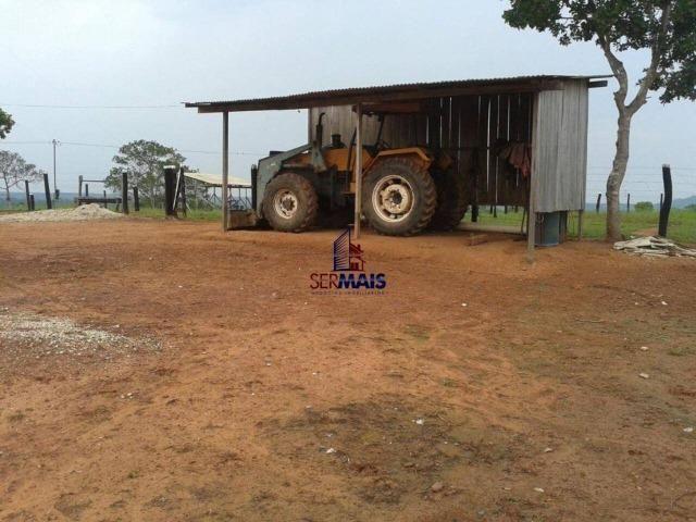 Excelente fazenda à venda na cidade de Alta Floresta do Oeste/RO - Foto 10
