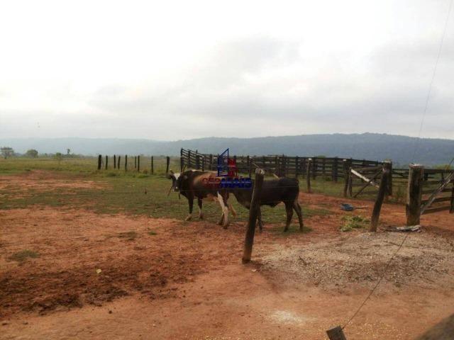 Excelente fazenda à venda na cidade de Alta Floresta do Oeste/RO - Foto 6