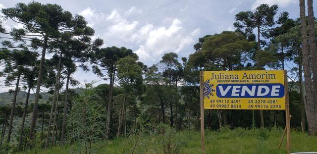 Sítio em Urubici/chácara em Urubici/área rural - Foto 3