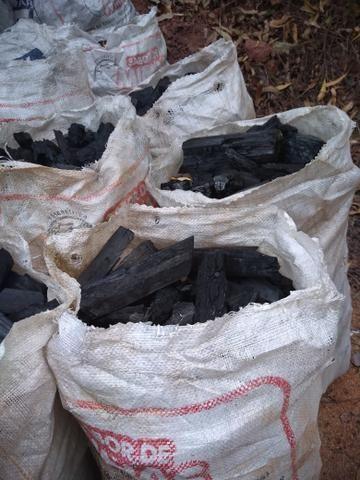 Carvão vegetal - Foto 2
