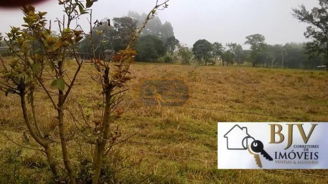 terreno rural que da fundos a lagoa.