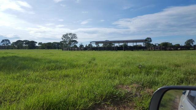 Fazenda Santo Antonio Leverger 870 Hectares - Foto 16